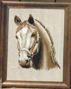 схема вышивки Белый конь1