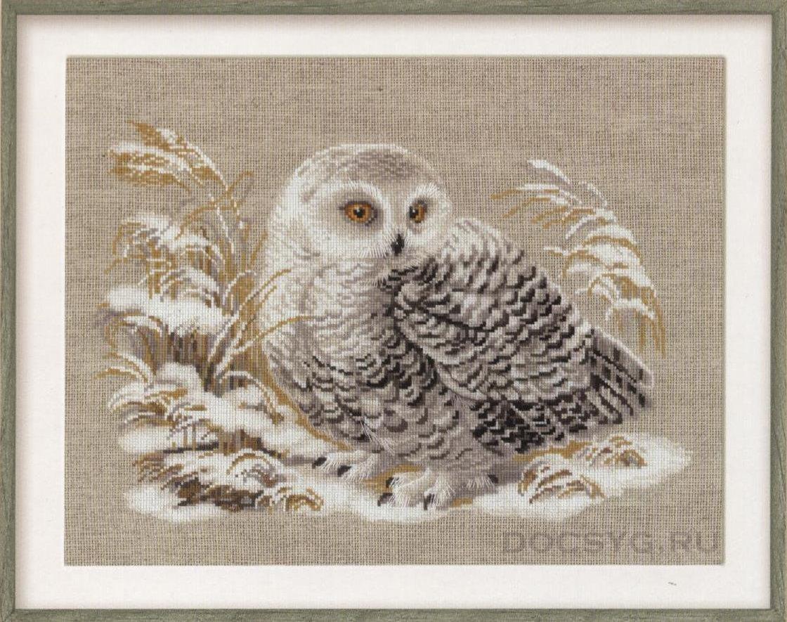 схема вышивки белая сова
