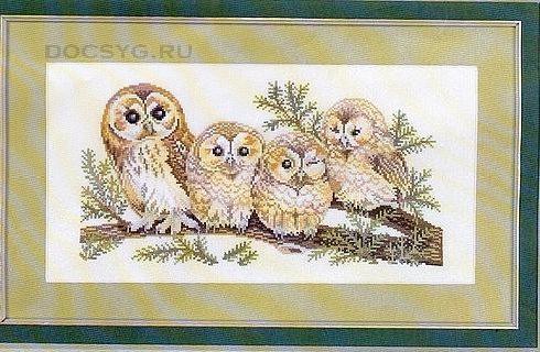 схема вышивки совиное семейство