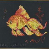 схема вышивки золотая рыбка