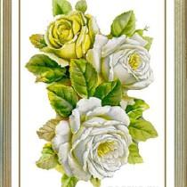 схема вышивки белые розы