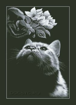 схема вышивки кот и магнолия
