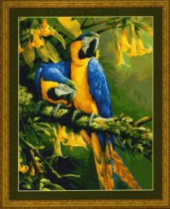 схема вышивки сине-золотые попугаи