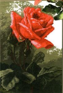 схема вышивки цветок розы