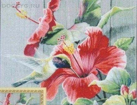 схема вышивки маленькая колибри