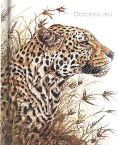 схема вышивки сафари с леопардом