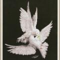 схема вышивки Моя голубка
