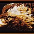схема вышивки Взор орла