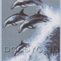 вышивка Дельфины