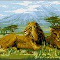 Схема вышивки Лев и львица