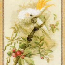 Интересная схема вышивки Попугай