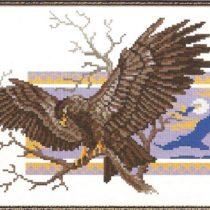 Схема вышивки Орел