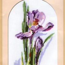 Схема вышивки Цветок ирис
