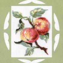 Схема вышивки Яблоки