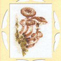 Схема вышивки Грибочки
