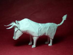 tipy-origami-mokryaya