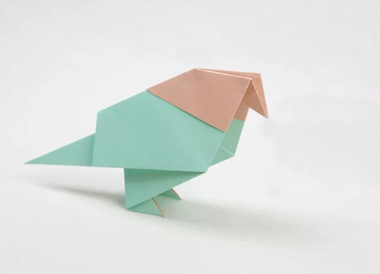 shema-origami-golub-ili-tsyplenok-1