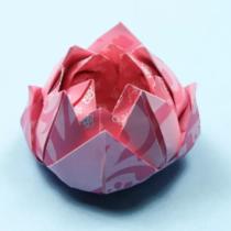 Схема оригами Цветок Лотоса из бумаги (коллекция: Цветы)