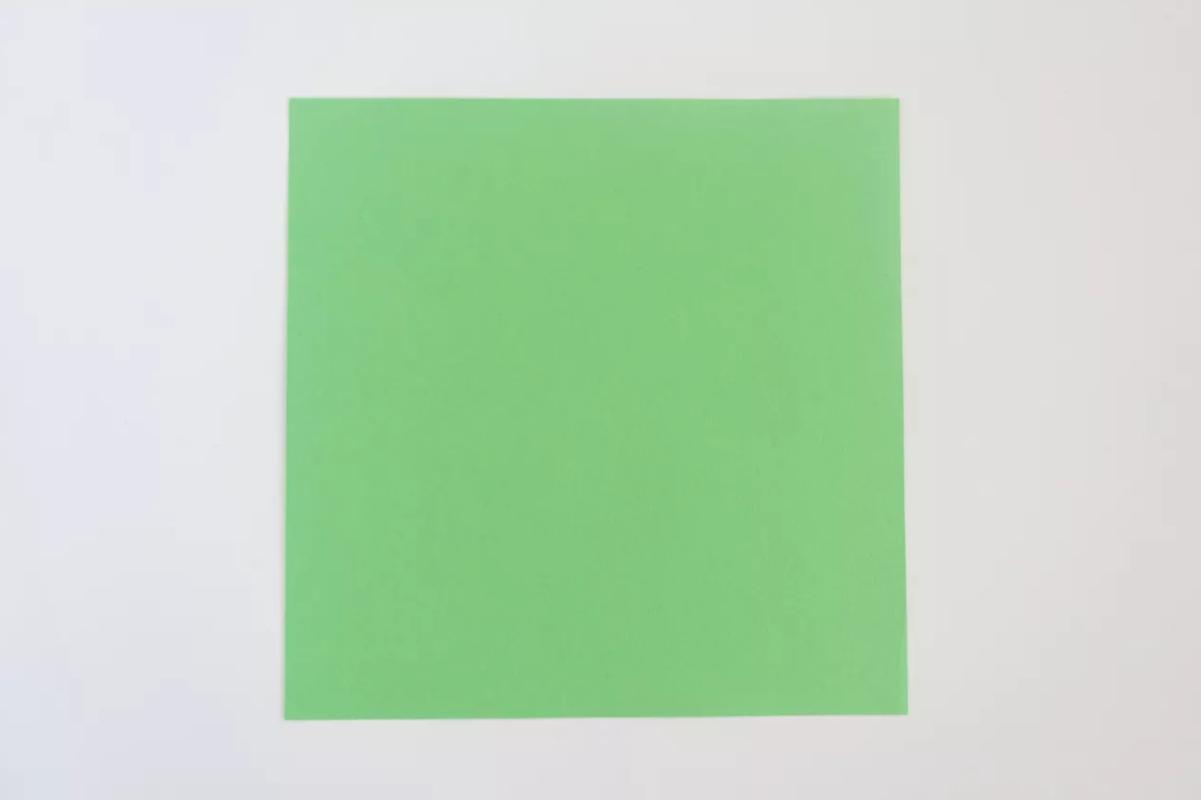 shema-origami-krasivaya-roza-20