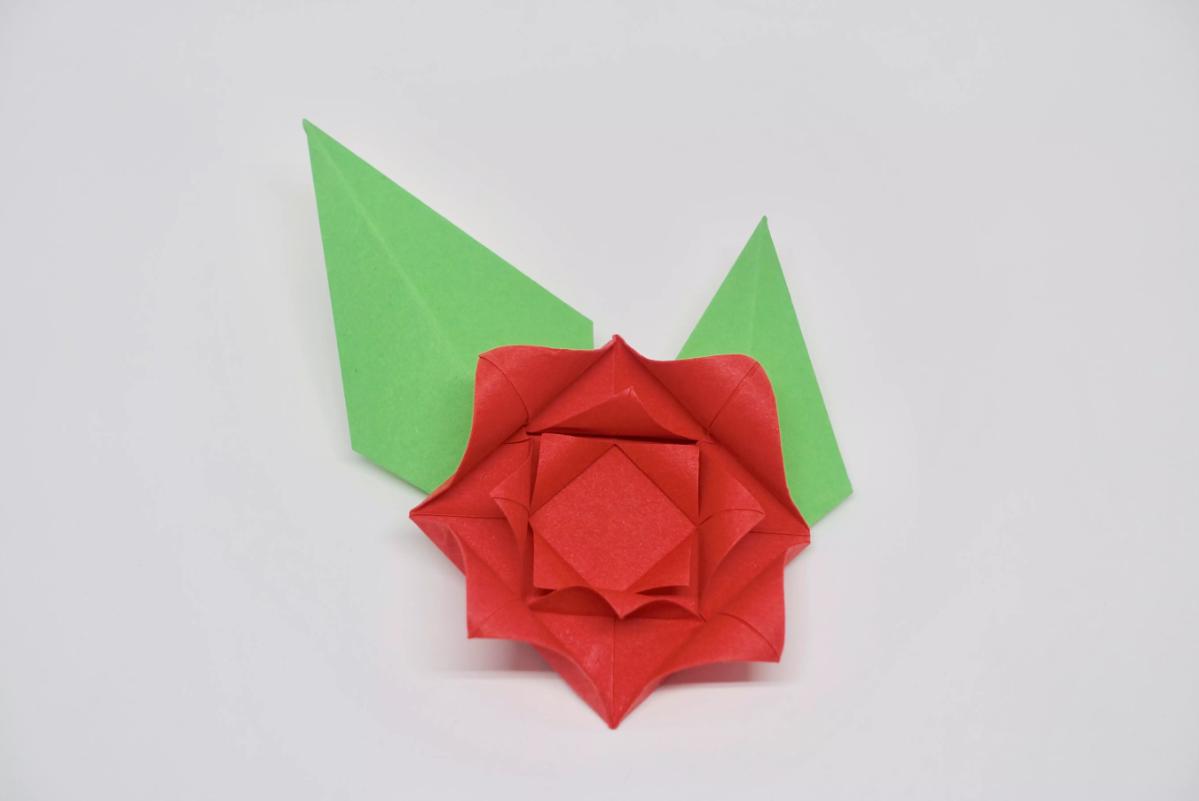 shema-origami-krasivaya-roza-31