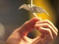 thumbs_zhuravlik-origami-20