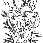 vyshivka-gladyu-dlya-nachinayushhih-6-150x150